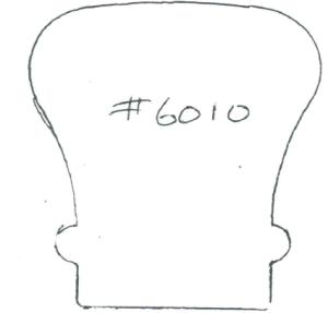 #6010